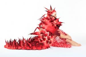 Природные формы войлока Marjolein Dallinga ( Голландия)