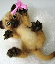 Котёнок Кеша