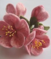 Цвет яблони мастера Юлия (Juli-world)