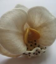 Орхидеи мастера Юлия (Juli-world)