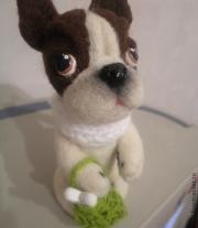 Валяная собака, Бульдог Француз Поль