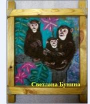 Мудрые обезьяны