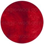новозеландская кардочесанная шерсть (Латвия) 27мкм тюльпан К3001