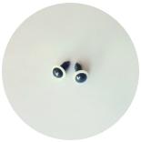 глазки для игрушек глазки 12мм прозрачные
