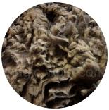 кудри и флис натуральные не окрашенные флис Manx коричневый