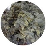 кудри и флис натуральные не окрашенные флис Romney от светло серого до серого