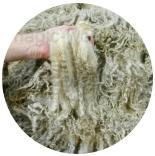 кудри и флис натуральные не окрашенные флис машам (masham)