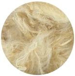 другие шелк и неокрашенные волокна штапель сои
