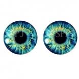 глазки для игрушек стеклянные реалистичные 6мм цвет 6