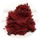 слабсы лесная ягода