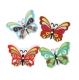 бабочка мультиколор