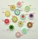 цветок мультиколор 03