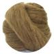 манкс (Manx) коричневый