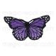 термонаклейка бабочка 04
