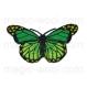 термонаклейка бабочка 05